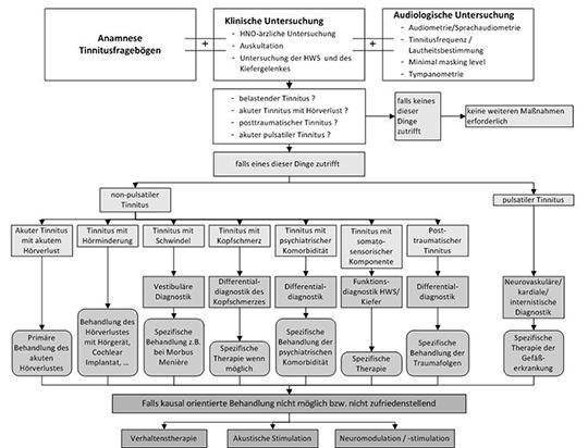 Algorithmus zur Diagnose und Therapie des chronischen Tinnitus