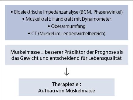 Abb. 7: Ernährungstherapeutisches Ziel – Aufbau und Erhalt der Muskelmasse.