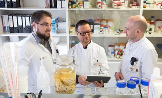 Abb. 1: Marcel Naumann, Dr. Arun Pal und Prof. Dr. Dr. Andreas Hermann diskutieren die Ergebnisse ihrer Studie (Foto: Stephan Wiegand, MF TU Dresden).