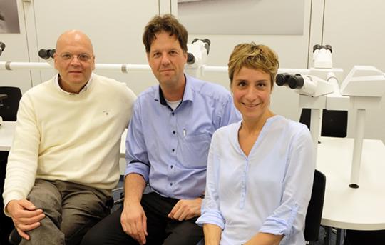 7,7 Millionen Euro für Forschungsverbund: Prof. Dr. Wolfgang Brück, Prof. Dr. Fred Wouters Dr. Gertrude Bunt.