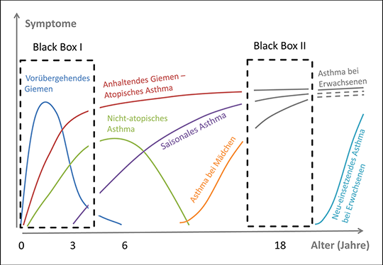 Unterschiedliche Krankheitsverläufe beim Asthma mit zwei Zeitfenstern, die im Zentrum der ALLIANCE-Forschung liegen.