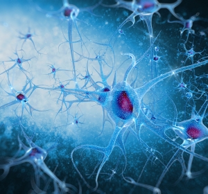 Guillain Barré Syndrom: Pathogenese, Diagnostik und Therapie