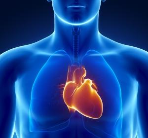 Besondere Forschungsleistungen der Herzmedizin gewürdigt