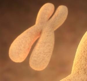 Mit Gendaten sagen Bioinformatiker Antibiotikaresistenzen vorher