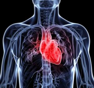 Studie prüft Ultraschalluntersuchung bei Herzinsuffizienz