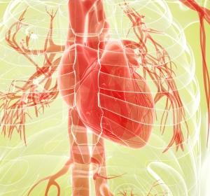 Chronische Herzinsuffizienz mit und ohne Typ-2-Diabetes: Outcome-Studien mit Empagliflozin gestartet