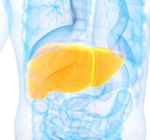 Hepatitis C: Glecaprevir/Pibrentasvir erzielt hohe Heilungsraten bei 8-Wochen-Therapie der Genotypen 1–6