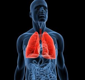 COPD verändert auch das Mikrobiom in der Lunge