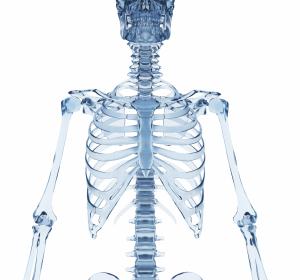 Antibiotikaprophylaxe bei Verdacht auf eine Knochen- oder Gelenksinfektion ist sinnvoll