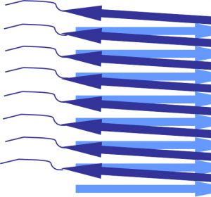 Neurodegenerative Erkrankungen: Erkenntnisse über die Bildung von fehlerhaften Proteinstrukturen