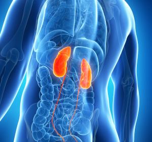 Niereninsuffizienz: Auswirkung der CMA auf das Herz-Kreislauf-System