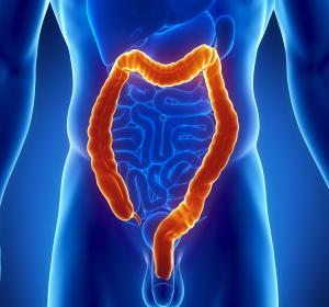 Das Mikrobiom und seine Bedeutung für die Gesundheit