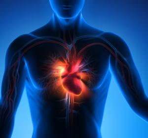Notfallversorgung von Herzinfarkt-Patienten gesichert