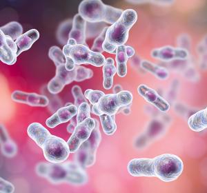 Fäkale Mikrobiota-Therapie bei Clostridium-difficile-Infektion: eine Erfolgsgeschichte