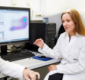 Innovative Zelltherapie macht Nierentransplantation verträglicher