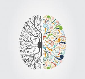 Wie anpassungsfähig ist das junge Gehirn?: Gesunde Studienteilnehmer für Vergleichsstudie gesucht