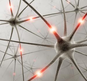Diabetische Neuropathie: Die unterschätzte Rolle des Vitamin B1-Mangels
