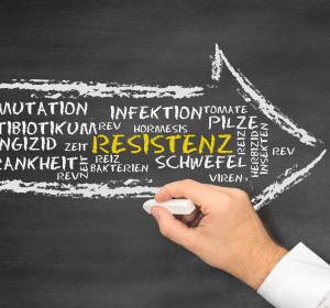 Antibiotika-Resistenz: Stoffwechsel der Bakterien soll ausgeschaltet werden