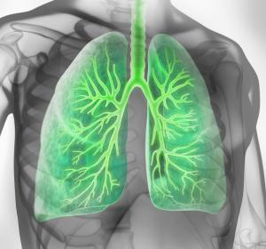 COPD: Neues bronchoskopisches Therapieverfahren
