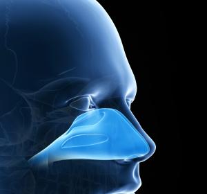 Pharmazeutische Behandlungsmöglichkeiten: Das Potential von Duftrezeptoren