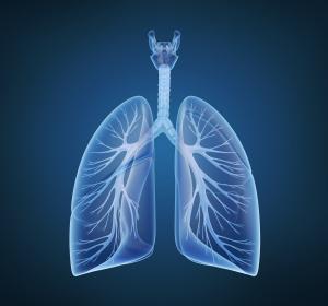 Mukoviszidose: Verschlechterte Lungenfunktion steht mit Interleukin-7 in Zusammenhang