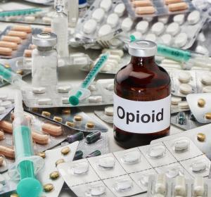 Opioide: Tierversuchsstudie zu Toleranzentwicklung