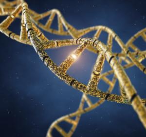 Zusammenspiel zwischen DNA und Genregulatoren