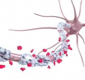 Multiple Sklerose: Neue Erkenntnisse zur Rolle von Myelin-produzierenden Zellen