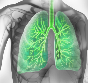 COPD: Verbesserter Tiotropium-Olodaterol-Inhalator