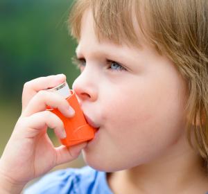 Asthma bei Kindern: Senken Hunde das Risiko?