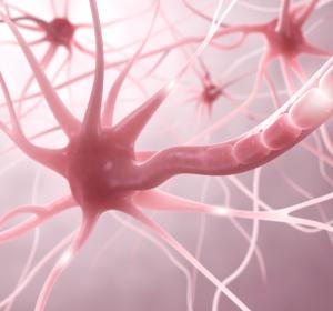MS-Therapie zwischen klinischer Studie und realer Welt