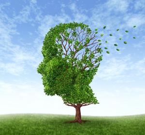 Alzheimer: BIN1-Risikotyp korreliert mit Tau-Ablagerungen