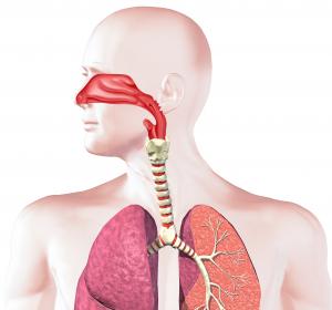 COPD: Studie soll Art und Häufigkeit der Komorbiditäten klären
