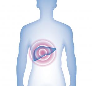 Akute Hepatische Porphyrie: Vielversprechende Ergebnisse der Phase-III-Studie zu RNAi-Therapeutikum