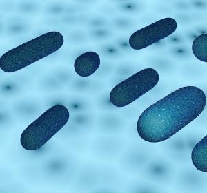 Krankenhauskeime: Spezieller Siphon soll nosokomialen Infektionen vorbeugen