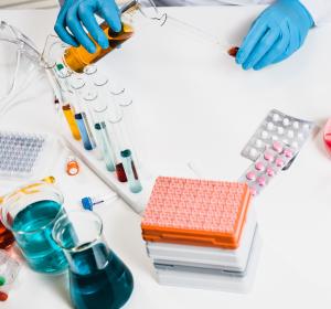 Mykobakterien: Potenzielle Zielproteine für die Antibiotikaentwicklung identifiziert