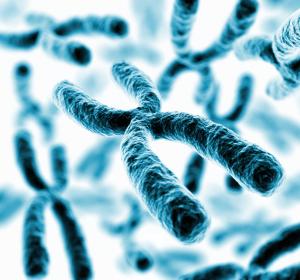 Proteome: Ansatz für personalisierte Medizin