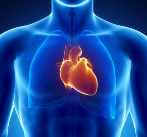 Herzschwäche: Forschungsprojekt zu dilatativer und hypertropher Kardiomyopathie