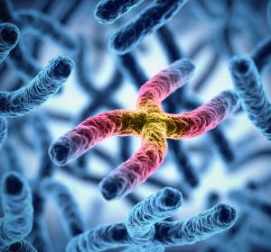 Rheumatoide Arthritis: Gentests sagen Erfolgsaussichten der Therapie mit Biologika voraus