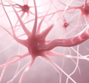 """""""Multiple Sklerose – behandelbar, aber nicht heilbar"""""""
