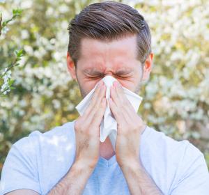 Psychische Faktoren nehmen Einfluss auf Allergien