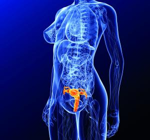 Gebärmuttertransplantation: Umstrittenes Vorgehen erfolgreich
