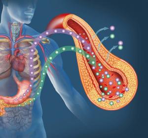 Typ-2-Diabetes: Weiterentwickelte Insulin aspart Formulierung senkt PPH-Risiko