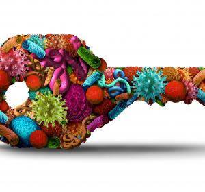 Virusinfektion: Mögliche Ursprünge des Immungedächtnisses identifiziert