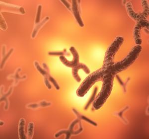 Seltene Gen-Mutation zerstört Darmgewebe