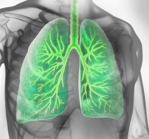 COPD: Beobachtungsstudie belegt Zufriedenheit mit Tiotropium-Olodaterol-Inhalator