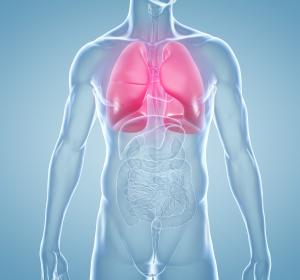Krebsmedikament repariert Gefäßwände bei Lungenhochdruck