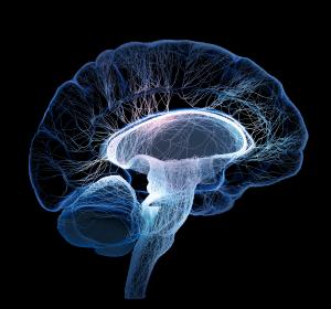 Coffin-Siris-Syndrom: Hinweise auf strukturelle Gehirnveränderungen