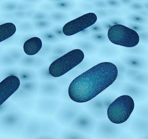 Antimikrobielle Beschichtungen für Wundauflagen mittels Zinkoxid