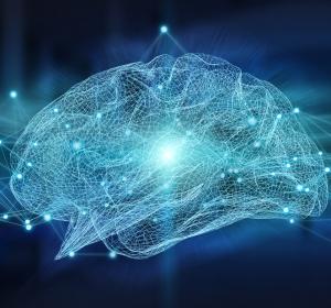 Multiple Sklerose: Schädigung der Projektionsneuronen löst kortikale Atrophie aus